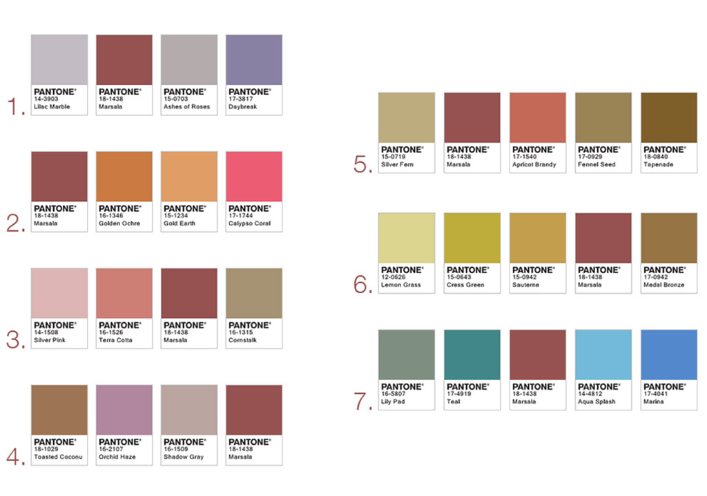 Pantone colour of the year 2015 marsala for Color palette com