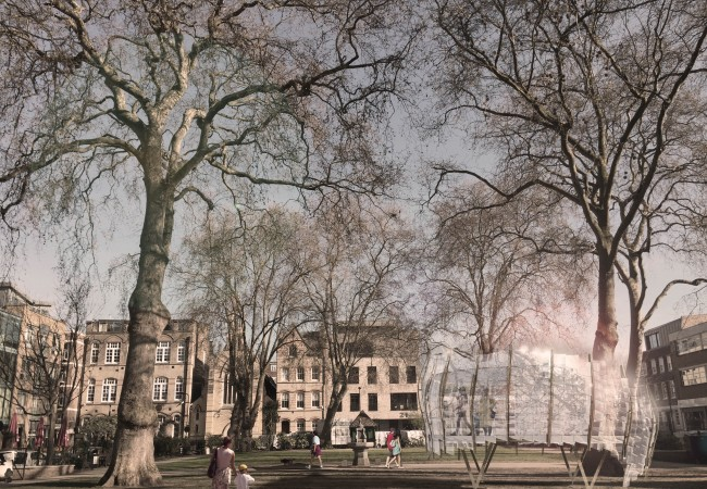 Tree Office Coming to London