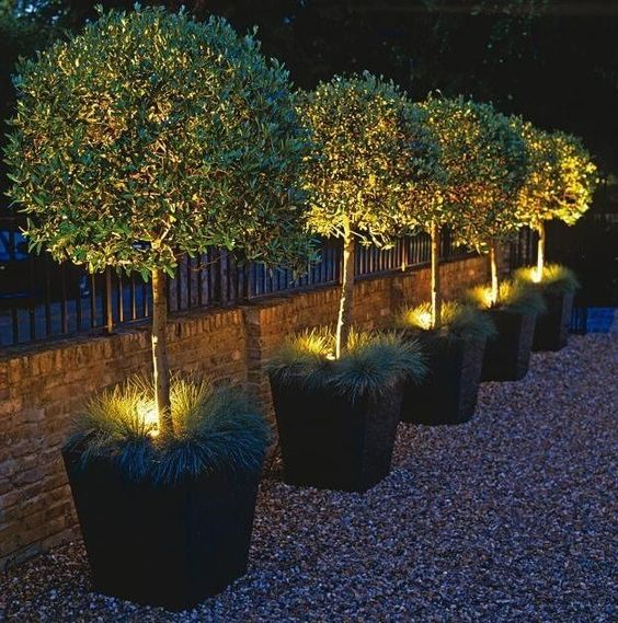 Landscape Lighting Ideas: 38 Innovative Outdoor Lighting Ideas For Your Garden