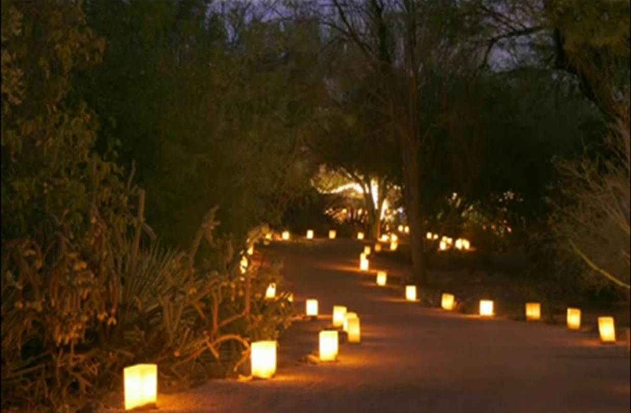 38 innovative outdoor lighting ideas for your garden for Garden lights