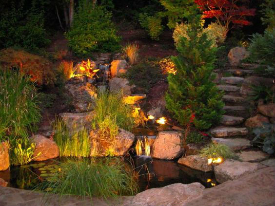 Pyracantha-Outdoor-Lighting-Ideas