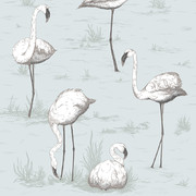 flamingos-wallpaper-95-8047