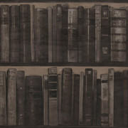 library-wallpaper-pack-of-2-cocoa