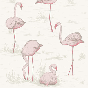 Flamingos Wallpaper - 95/8045