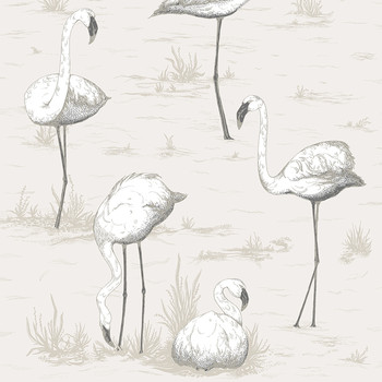 Flamingos Wallpaper - 95/8046