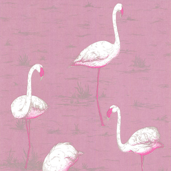 Flamingos Wallpaper - 66/6043