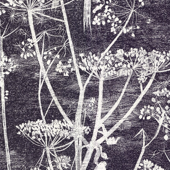 Cow Parsley Wallpaper - 66/7046