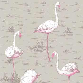 Flamingos Wallpaper - 66/6042