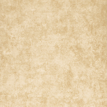 Gilded Fresco Wallpaper - FG054/T51 Gold Leaf