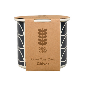 Grow Your Own Chives Set