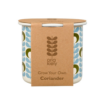 Grow Your Own Coriander Set
