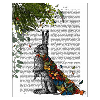 Hare With Butterfly Cloak Print