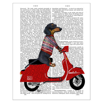 Dachshund On A Moped Print