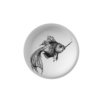 Domed Paperweight - Smoky Fish