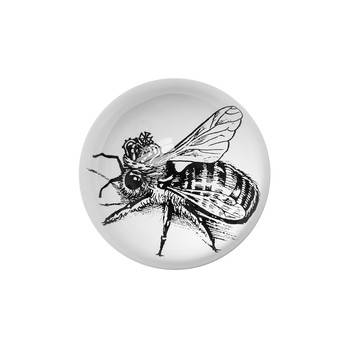 Domed Paperweight - Queen Bee