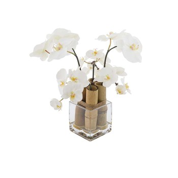 White Phalaenopsis Orchid with Bamboo - Small