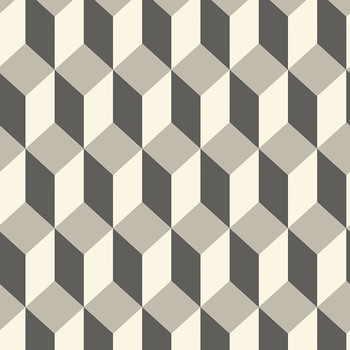 Delano Wallpaper - Grey & Black - 105/7031
