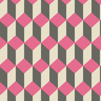 Delano Wallpaper - Pink & Black - 105/7033