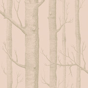 woods-wallpaper-103-5024