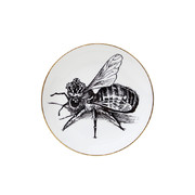 perfect-plates-queen-bee-small
