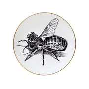 perfect-plates-queen-bee-large