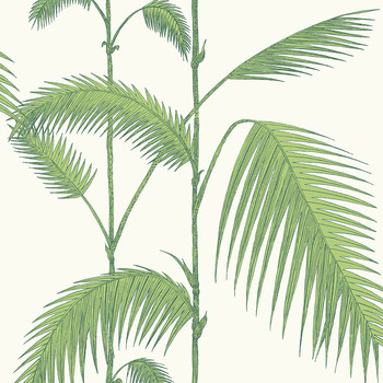 Palm Leaves Wallpaper - 95/1009