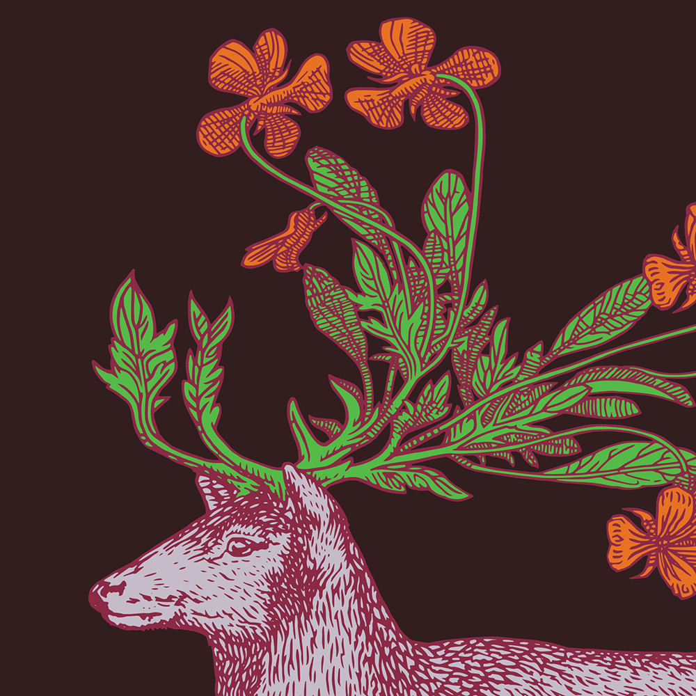 Buy avenida home puddin 39 head animaux placemat deer for Amara homes