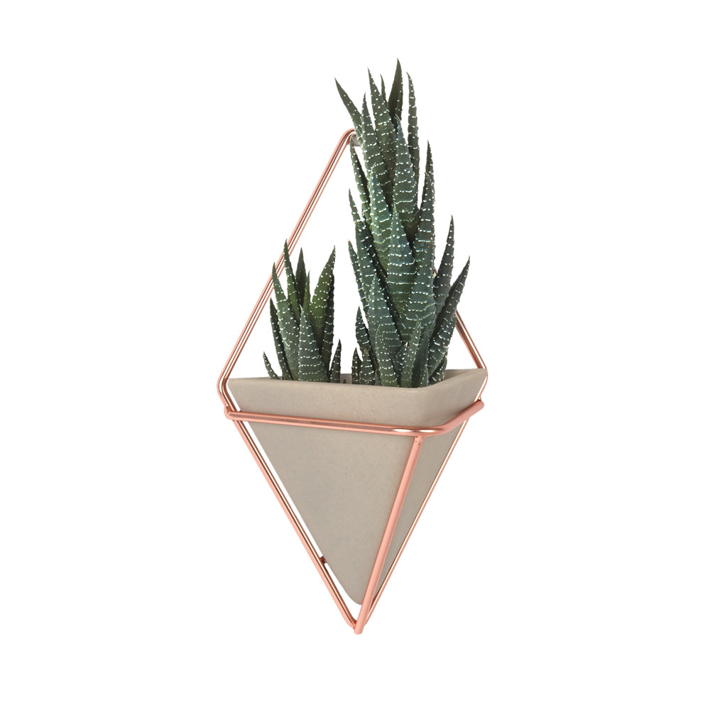 Design Wall Planters buy umbra trigg small copper wall planters set of 2 amara