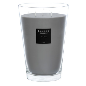 All Seasons Scented Candle - White Rhino
