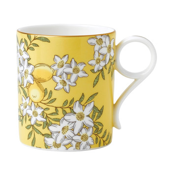 Tea Garden Mug - Lemon & Ginger