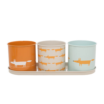 Mr Fox Herb Pot - Set of 3
