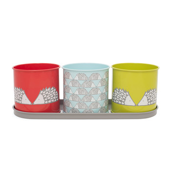 Spike Herb Pot - Set of 3