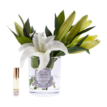 Lily Bulbs in Clear Glass - Ivory