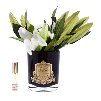 Lily Bulbs in Black Glass - Ivory