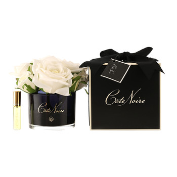 Roses in Black Glass with Giftbox - Ivory