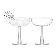 gin-coupe-glass-set-of-2