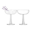 LSA International - Gin Coupe Glass - Set of 2