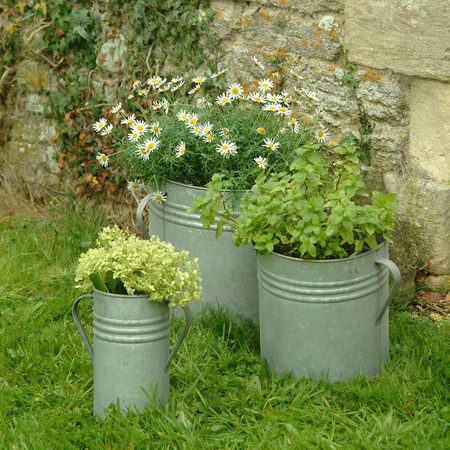 Garden Trading - Set of 3 Planters
