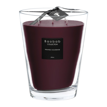 Baobab Collection - All Seasons Scented Candle - Miombo Woodlands - 24cm