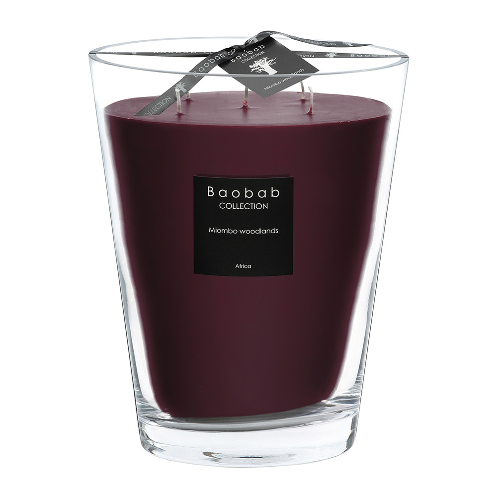 Buy baobab collection all seasons scented candle miombo for What are the best scented candles to buy