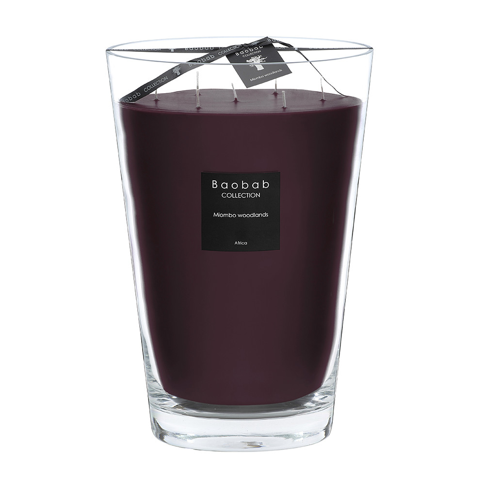 Baobab Collection - All Seasons Scented Candle - Miombo Woodlands - 35cm
