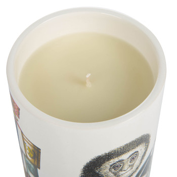 Scimmie Scented Candle - 300g