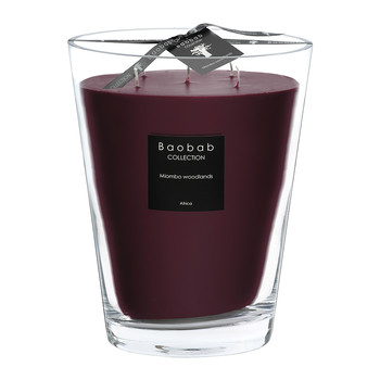 All Seasons Scented Candle - Miombo Woodlands