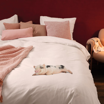 Miss Peggy Duvet Set - Soft Pink - Single