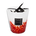 Baobab Collection - Feathers Masaai Scented Candle - 16cm