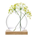 LSA International - Axis Vase & Ash Base - Clear - Large