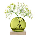 LSA International - Axis Vase & Ash Base - Olive Green - Small