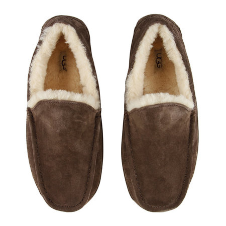 UGG® - Chaussons Homme Ascot - Expresso