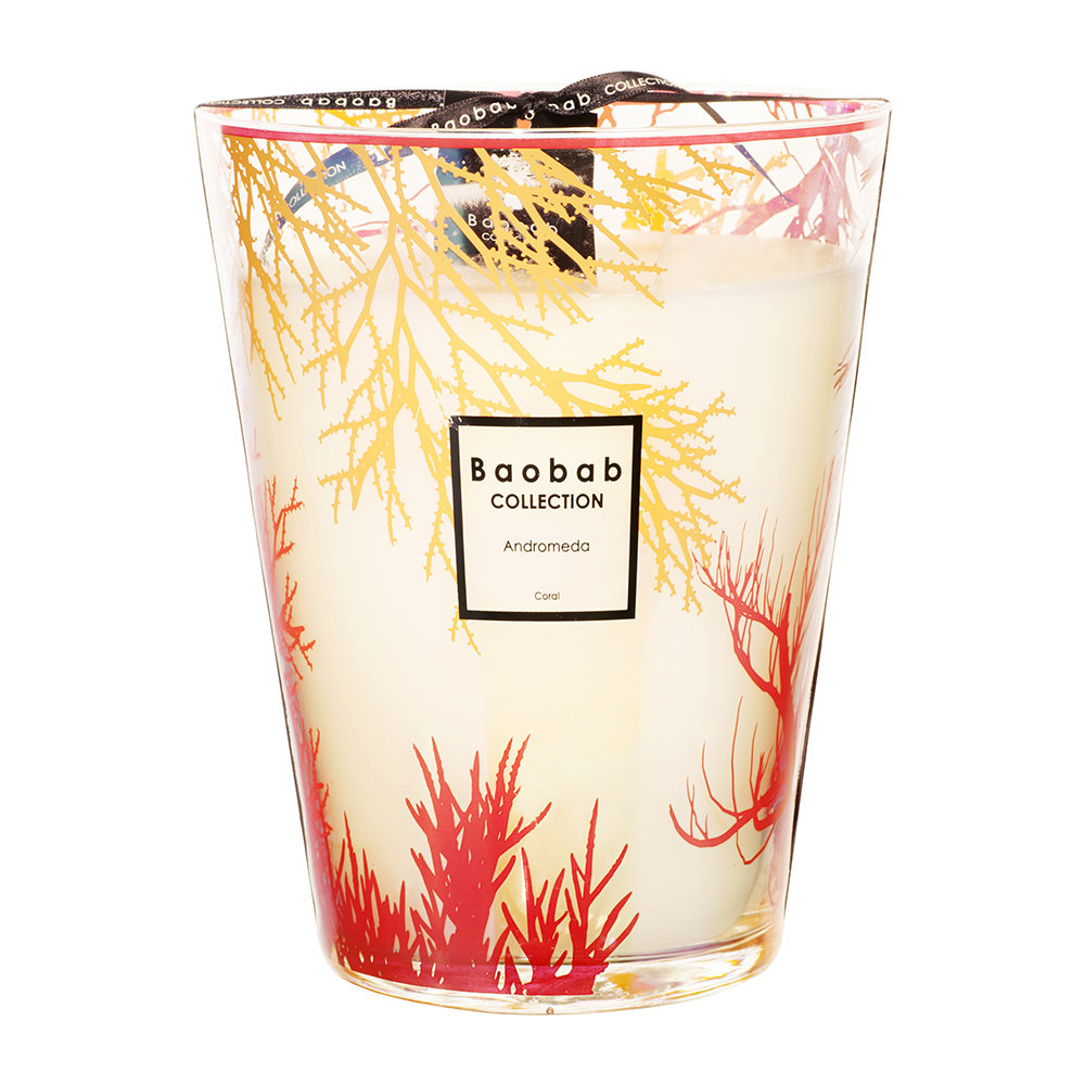 baobab collection coral scented candle gay times uk. Black Bedroom Furniture Sets. Home Design Ideas