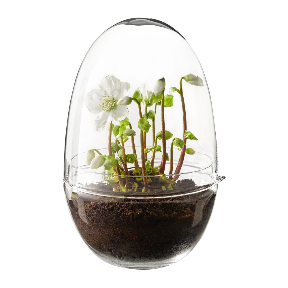 Design House Stockholm - Grow Greenhouse - Clear - Extra Large